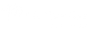 Methodist Services